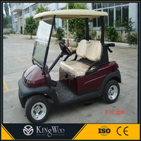 CE Approved 2 Seats Mini Used Golf Cart Electric