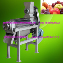 ginger processing plant / ginger extract with high quality