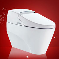 Hot Sale a multi-function control button Bathroom Siphonic One Piece Toilet WC Manufacture In China