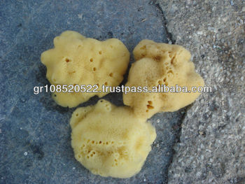 Natural sea sponge Type: Silk/Fina