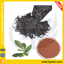 Supply High Quality Instant Black Tea Extract Powder