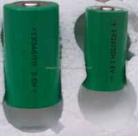ER34615h D size primary dry cell 3.6v 19000mah lithium battery for AMR meter, water meter