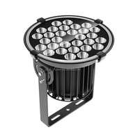 Outdoor Waterproof High Power 5degree narrow beam angle 100W sport led flood light