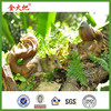 New Garden Ornament Lively Squirrel 2 PCS/set Home Decor and Garden Decor Resin Craft