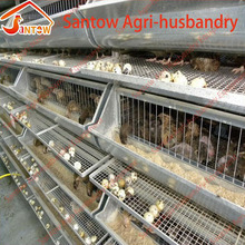 Automatic quail breeding cages quail cage quail layer laying cage