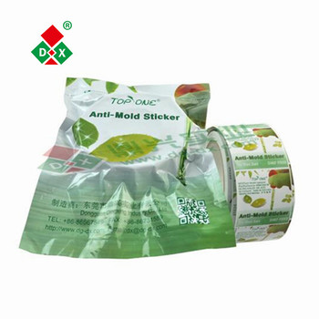 DMF free high efficient shoes anti-mold chip