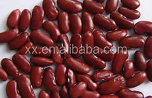2015 New Crop dark Red Kidney Beans, high quality types Of Kidney Beans