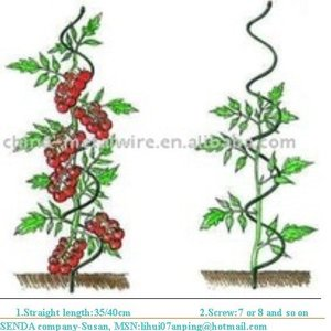 PLANT SPIRAL SUPPORTER/tomato growing spiral wire