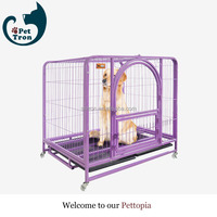 Direct factory price best choice colorful cat cage cat kennel
