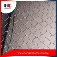 China hexagonal wire mesh netting for cage