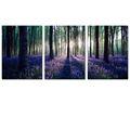 Landscape Painting Art Lavender Forest Painting Prints for Home Wall Decor Whole Multi panels Artwork