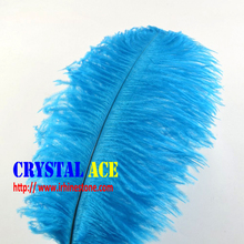 wholesale cheap ostrich feathers /Ostrich Wing Plume/ Ostrich Feathers Trim with different siezes and colors