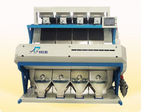 CCD Optical Cacao Beans Color Sorting Machine