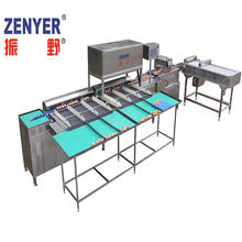 Egg electric grading machine by weight for sale