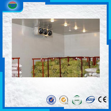 Latest Fashion economic clean cold storage/cold room/food processing room