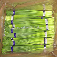 2013 Chinese Frozen garlic sprouts