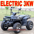 Electric Quad 2000W