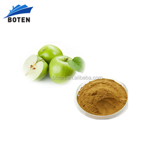 Boten Supply Natural Green Apple Extract Powder with high quality
