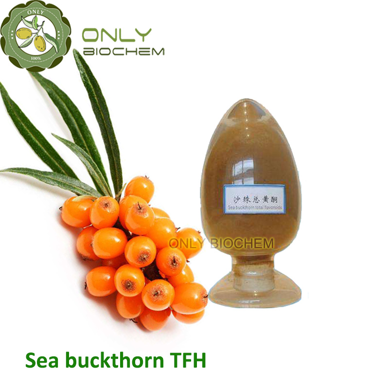 Sea Buckthorn Extract/ Total Flavones of Hippophae Rhamnoides