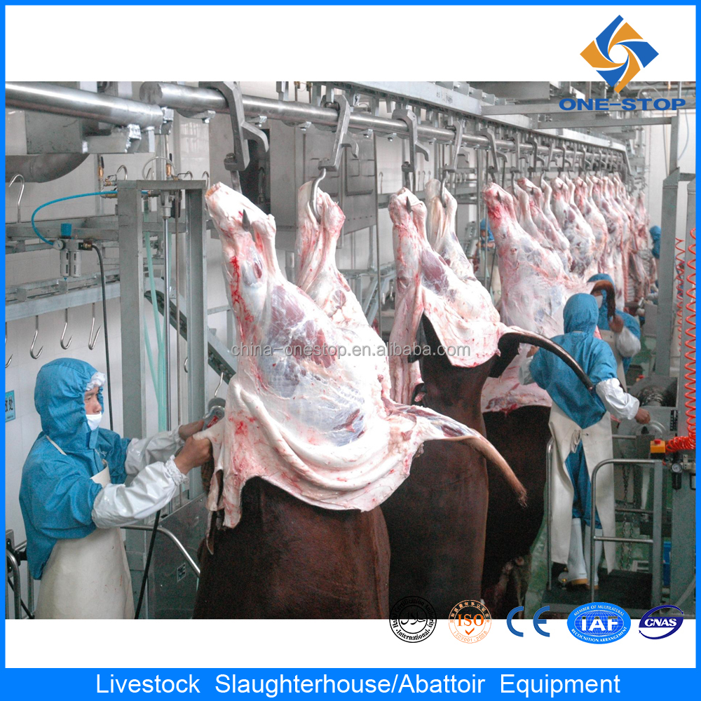used meat processing machine donkey slaughter equipment butcher equipment