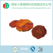 Antrodia Cinnamomea Extract Powder With 50% polysaccharide And Triterpene