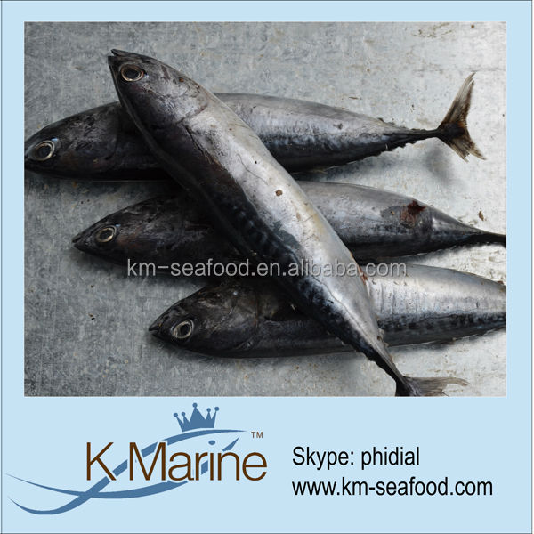 Export Bonito Fish Food For Canned Tuna lot number#kmw4110