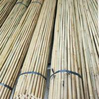 Natural Strong Tonkin Bamboo Poles Stake