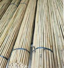 Natural strong tonkin bamboo poles/stake/stick for large supply