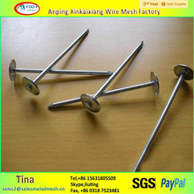 Made in china corrugated roofing galvanized nails in 1 kg box