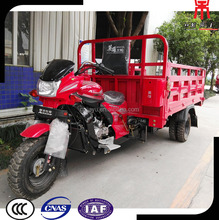 250cc Motorized Tricycle Adult Chopper 5 Wheeler Motorcycle