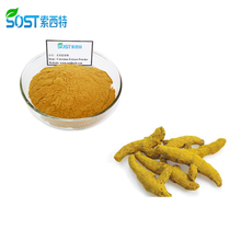 SOST Good Reputation Turmeric Root Extract Powder 95% Curcumin Extraction Plant