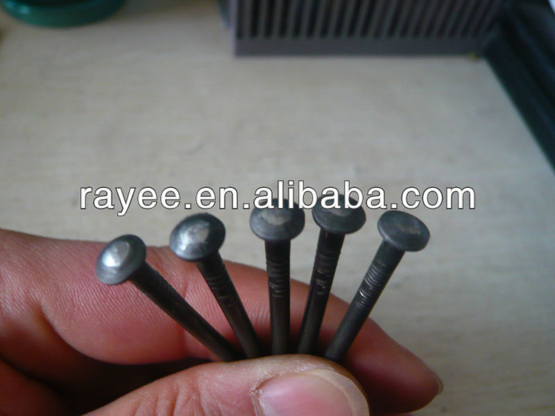 Common Wire Iron Dome Head Nail
