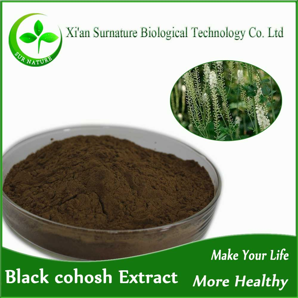 High quality black cohosh Actaea racemosa Extract powder