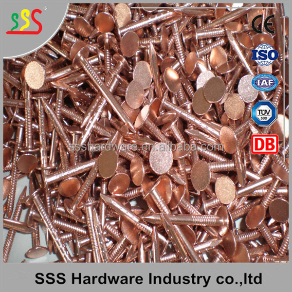 Flat head brass nail copper nail Phosphor bronze nails wholesale