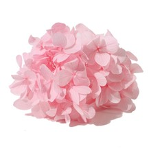 High Quality Wedding Decoration Real Touch Beautiful Preserved Hydrangea flower