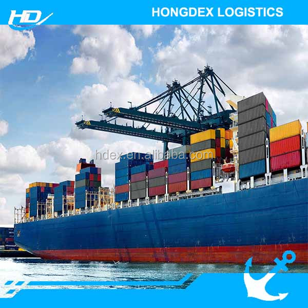 Professional LCL sea freight transportation company to Australia