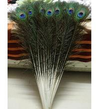 Lucky Arts nature Peacock Feathers in Choice of Sizes peacock feather natural feather