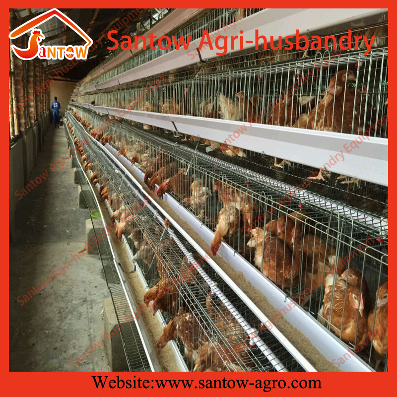 Poultry equipment chicken cage for sale in philippines