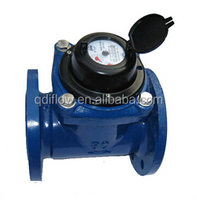 REMOVABLE ELEMENT WOLTMAN WATER METER
