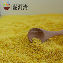 Price Of Glutinous Yellow Millet