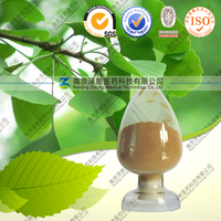 Manufacturer supplier bulk price ginkgo biloba extract powder