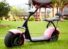 2017 Number One Best Electric Scooter Caiqiees City Coco