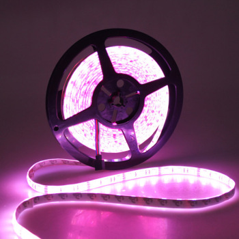 Smd 5050 waterproof IP44 color changing RGB Led tape light
