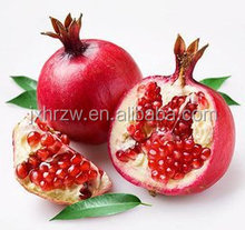 high quality pomegranate extract ,pomegranate seed oil