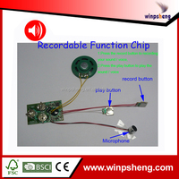 Led Greeting Card Flashing/Sound Recording Module For Greeting Cards