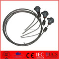 Mineral Insulated Thermocouple with head mount