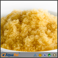 purolite c100e ion exchange polymer chemicals potable water grade