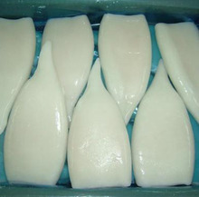Glazing Frozen I.Q.F Illex Squid Tube With Competitive Price