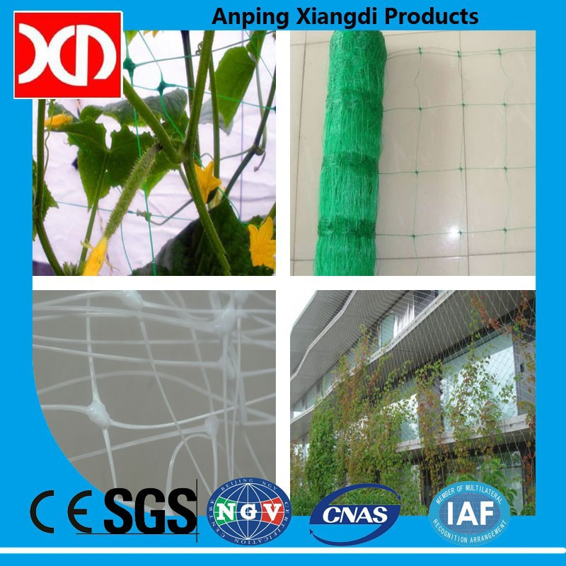 100% virgin material Plastic trellis net plant climbing support netting cucumber netting vine netting Pea & Bean netting