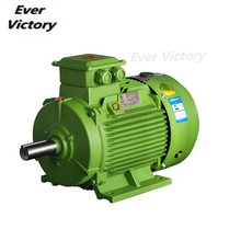 Y2 type 380V 1400rpm 300kw three phase electric motor